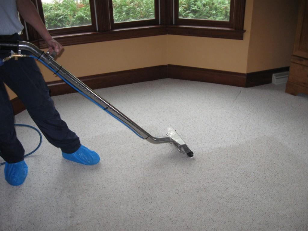 limpieza de alfombras6